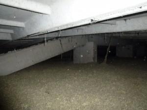 Schaden-Dachbalken-Oschatz